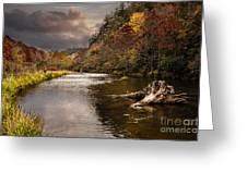 Trout Fishing Greeting Card by Tamyra Ayles