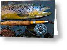 Trout On Fly Greeting Card