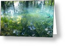 Trout Pond Greeting Card