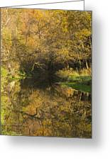 Trout Run Creek Fall 2 Greeting Card