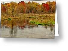 Trout Stream II- Textured Greeting Card