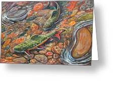 Trout Stream Greeting Card by Jenn Cunningham