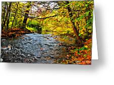Trout Stream Greeting Card