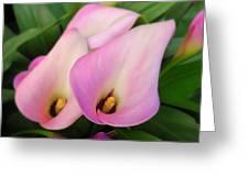 Trumpet Lillies Greeting Card