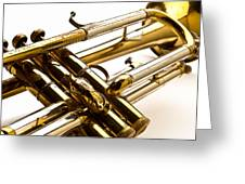 Trumpet Valves Greeting Card