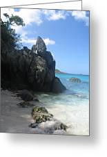 Trunk Bay St. John  Usvi Greeting Card