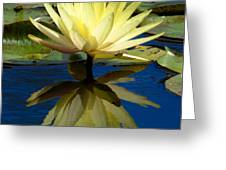 Truth Reflected Greeting Card