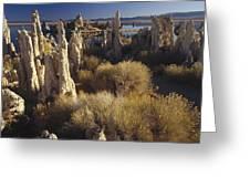 Ttufa Formations Mono Lake California Greeting Card