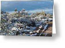Tucson Covered In Snow Greeting Card