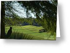 Tucson Foothills Golf Course Greeting Card