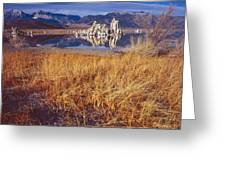 Tufa And Frozen Grass-h Greeting Card