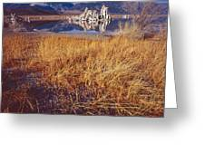Tufa And Frozen Grass-sq Greeting Card