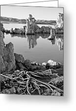 Tufa In Black And White Greeting Card