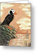 Tufted Puffin At Dusk Greeting Card