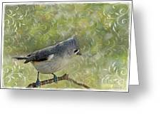 Tufted Titmouse With Decorations Greeting Card