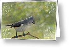 Tufted Titmouse With Decorations II Greeting Card