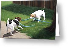 Tug-o-war Greeting Card by Karen Elkan