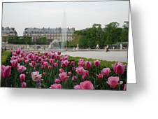 Tuileries Garden In Bloom Greeting Card by Jennifer Ancker