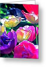 Tulip 10 Greeting Card