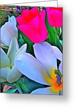 Tulip 35 Greeting Card