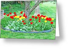 Tulip Bed Greeting Card
