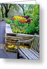 Tulip Bench Greeting Card