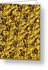 Tulip Duvet Greeting Card