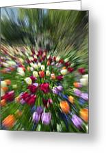 Tulip Explosion Greeting Card