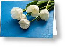 Tulip Flowers Over Blue Greeting Card