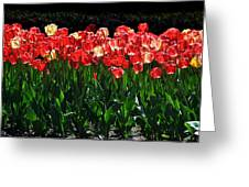 Tulip Forest Greeting Card