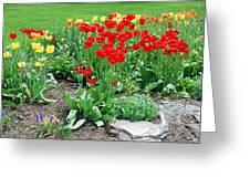 Tulip Gardenscape Greeting Card