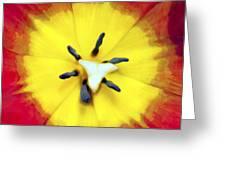 Tulip Nucleus Greeting Card