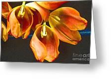 Tulip Study 2 Greeting Card