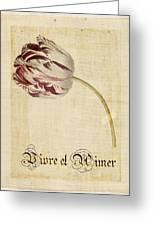 Tulip - Vivre Et Aimer S02t03tr Greeting Card