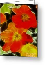 Tulips-6681-fractal Greeting Card