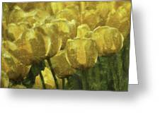 Tulips All Over Greeting Card