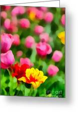 Tulips Greeting Card by Amy Cicconi