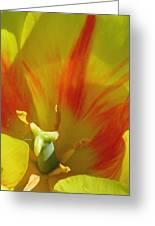 Tulips - Cheerful Energy 06 Greeting Card