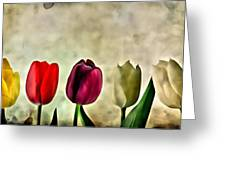 Tulips Color Greeting Card