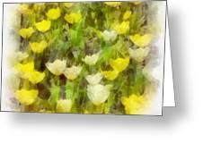 Tulips Everywhere Greeting Card