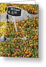 Tulips For Sale In Market, Close Up Greeting Card