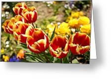 Tulips In Japan Greeting Card