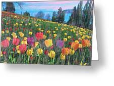 Tulips Lake Greeting Card