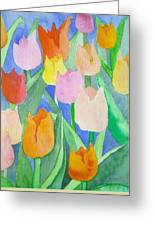 Tulips Multicolor Greeting Card