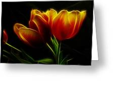 Tulips Of Light Greeting Card