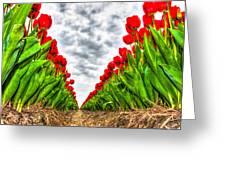 Tulips Part IIi Greeting Card