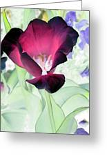 Tulips - Perfect Love - Photopower 2043 Greeting Card