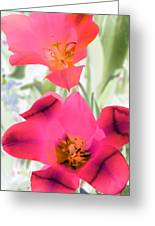 Tulips - Perfect Love - Photopower 2045 Greeting Card