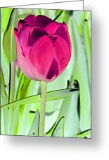 Tulips - Perfect Love - Photopower 2053 Greeting Card