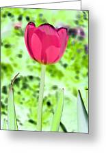 Tulips - Perfect Love - Photopower 2070 Greeting Card